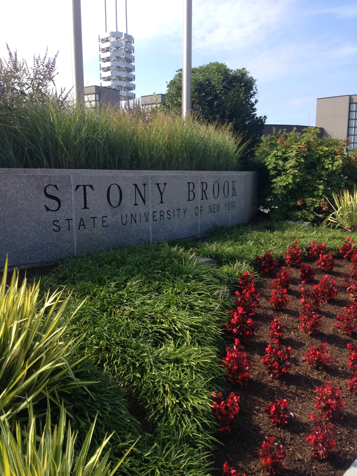 Stony brook university job postings-4388