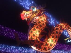 lantern fe