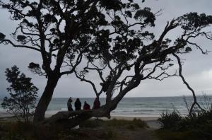 One last bach trip on the Coramandel peninsula