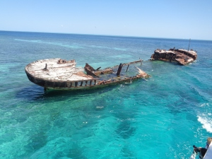 Shipwreck on Heron Island - the perfect snorkeling site!