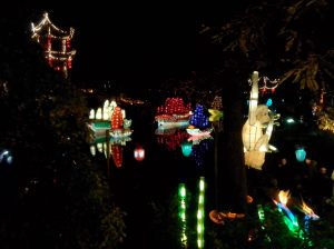 A nighttime illumination of the Chinese botanical gardens