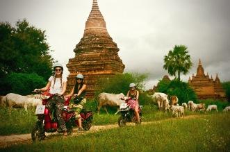 E-Bike Pagoda Perusing