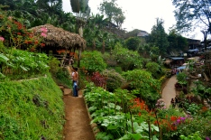 Meo Tribal Village