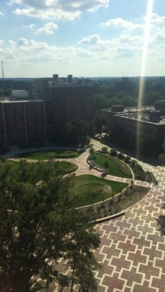 View of the Brickyard below from the 6th floor of the library.