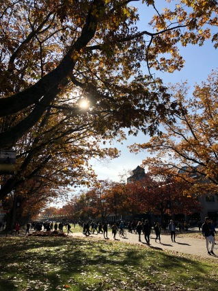 Main Mall in fall colours!